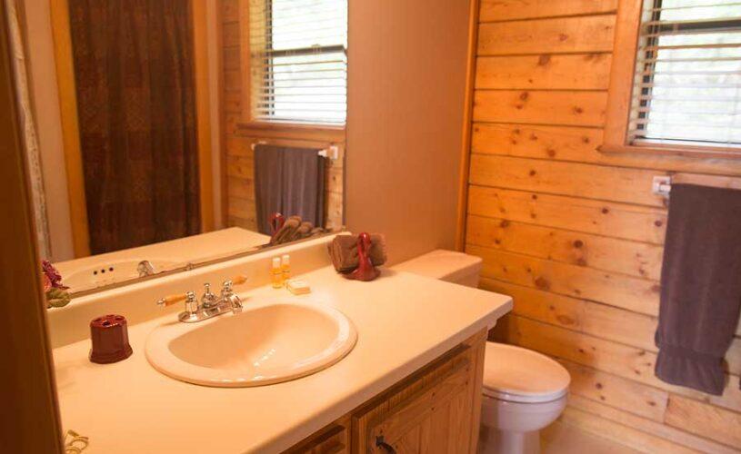 mountain top cabin 1 bathroom
